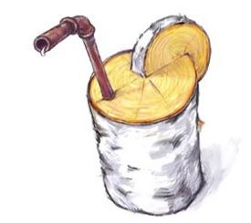 Берёзовый сок. Полезные свойства, добыча и хранение березового сока