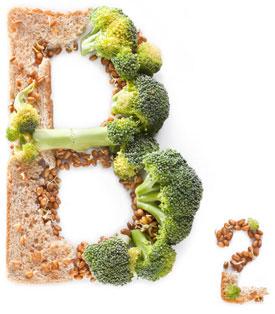Витамин B2 - в продуктах, недостаток, биологические свойства