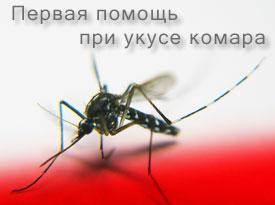Укус комара. Лечение