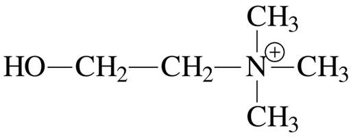 Химическая формула холина