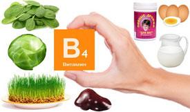 Источники витамина B4 (холина)
