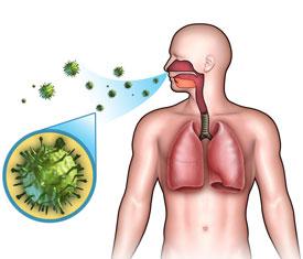 Причины гриппа и механизм заболевания