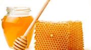 Мёд— полезные свойства, состав, виды и противопоказания