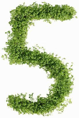 Диета №5 - питание при заболеваниях печени: гепатитах, холецистите, циррозе печени и других болезнях. Что можно есть и что нельзя. Меню на неделю