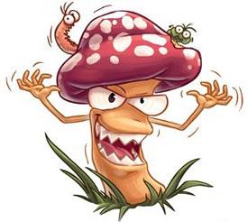 Отравление грибами. Симптомы и первая помощь при отравлении