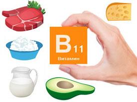 Источники витамина B11 (карнитина)