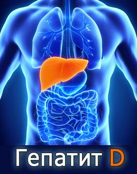 Гепатит D - симптомы, причины, диагностика и лечение гепатита Д