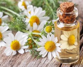 Рецепты применения ромашки в лечебных целях