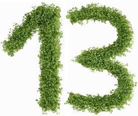 Диета №13 (стол №13): питание при острых инфекционных заболеваниях
