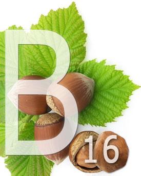 Витамин В16 (диметилглицин) - функции, источники и применение витамина B16