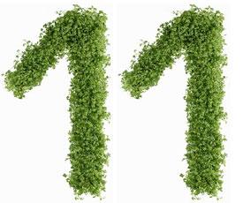 Диета №11 (стол №11) – лечебная система питания, которую назначают при туберкулезе, анемии, истощении организма, а также пониженной массе тела. Меню диеты №11 на неделю