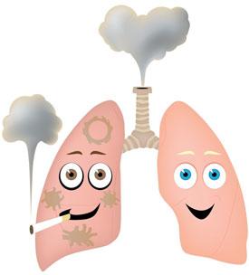 Причины туберкулеза