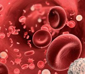 Виды анемии