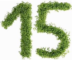 Диета №15 (стол №15): питание для перехода из лечебной диеты на обычный рацион