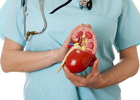Как лечить пиелонефрит? Лечение пиелонефрита