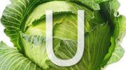 Витамин U (S-метилметионин)— описание, применение, польза, в каких продуктах содержится витамин U