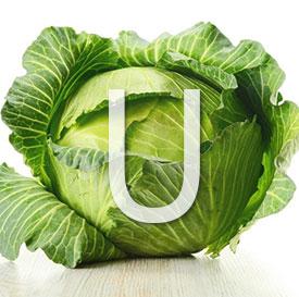 Витамин U (S-метилметионин) - описание, применение, польза, в каких продуктах содержится витамин U