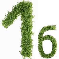 Диета №1б (стол №1б) – питание при гастрите, язве желудка и двенадцатиперстной кишки во время их обострения