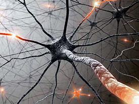 Виды неврита