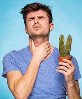 От храпа болит горло