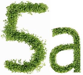 Диета №5а (Стол №5а) – питание при гепатите, циррозе печени, холецистите, ЖКБ, ангиохолите