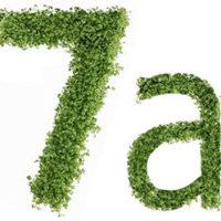 Диета №7а (стол №7а): питание при нефрите