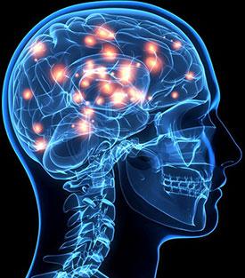 Энцефалит – симптомы, причины, лечение и профилактика энцефалита