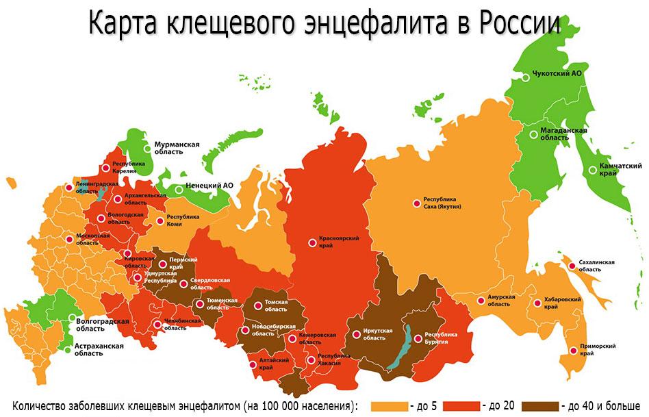 Карта энцефалита. Наиболее опасные районы энцефалита в России