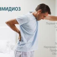 Хламидиоз – симптомы, причины, лечение и последствия хламидиоза