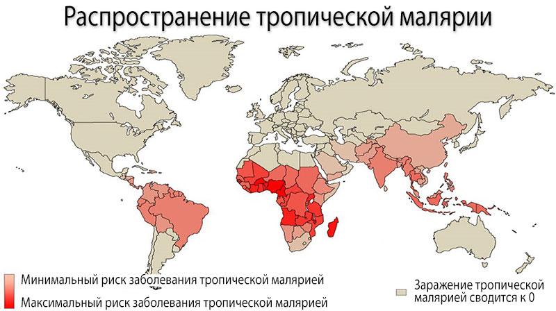 Ареал обитания малярийных комаров