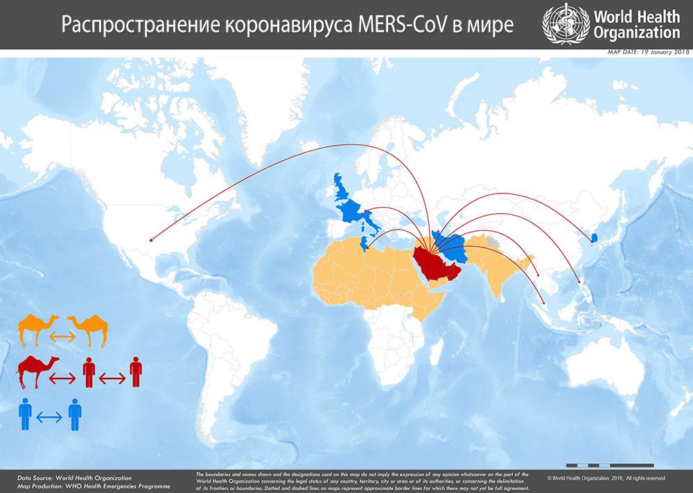 Распространение MERS-CoV (эпидемиология)