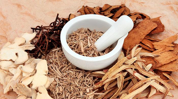 Рецепты осины в народной медицине. Лечение осиной в домашних условиях